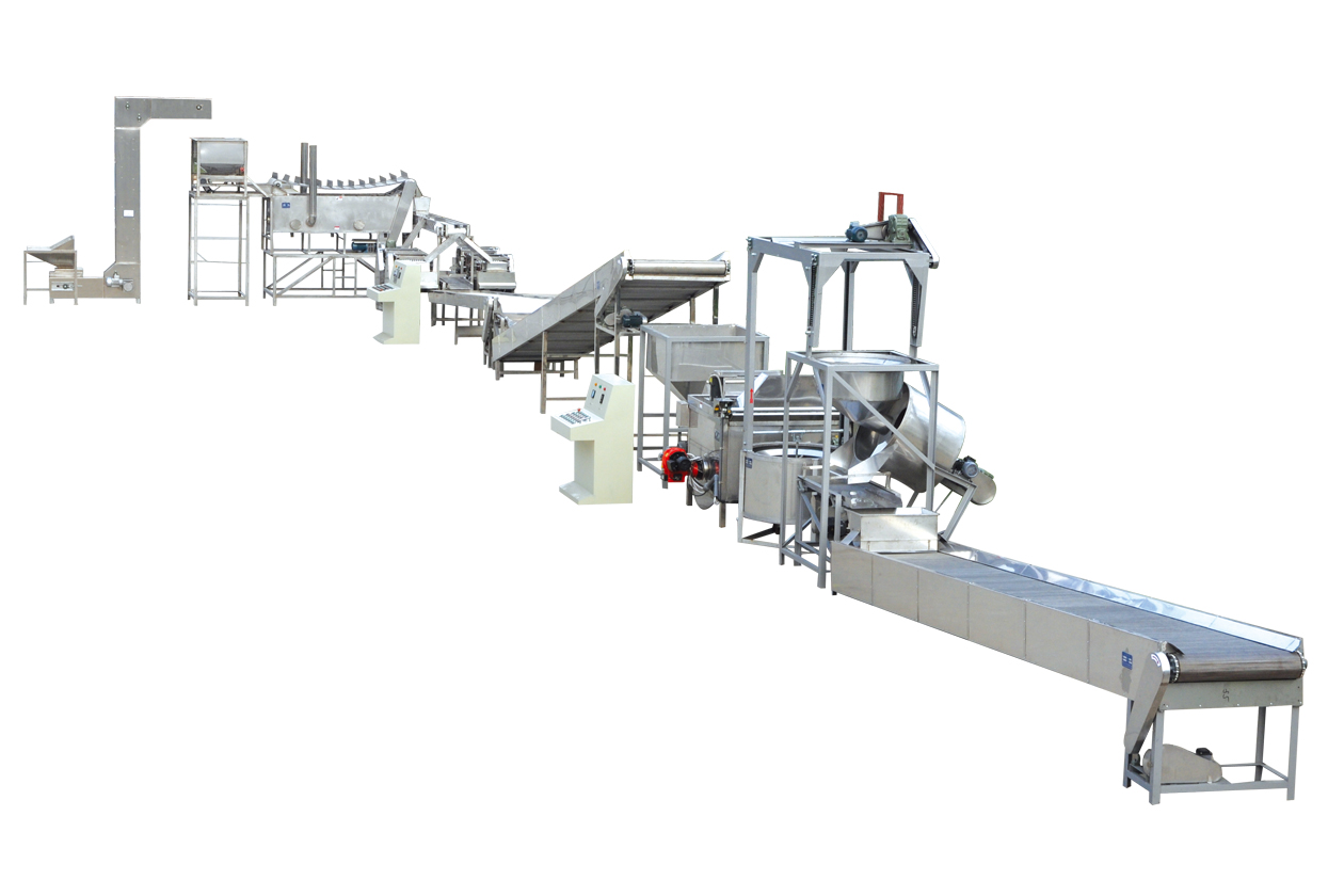 Automatic Nuts Frying Production Line
